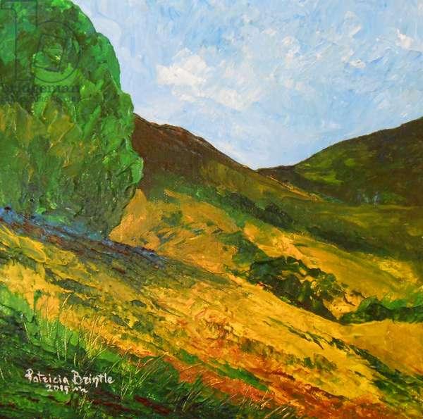 Morne La Selle, 2015 (acrylic on canvas)