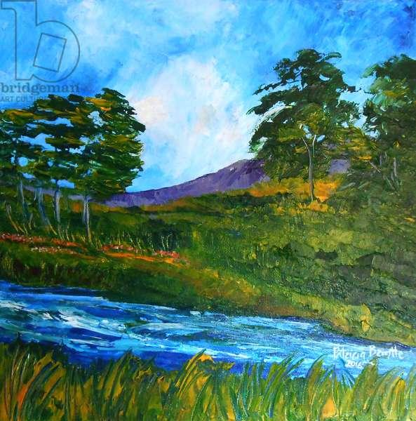 Ruisseau pres de Marmelade, 2016 (acrylic on canvas)