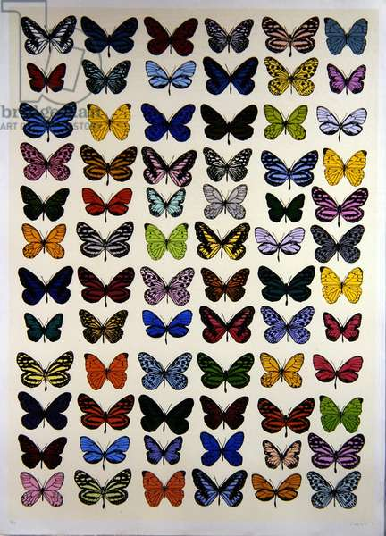 72 Butterflies (screenprint)