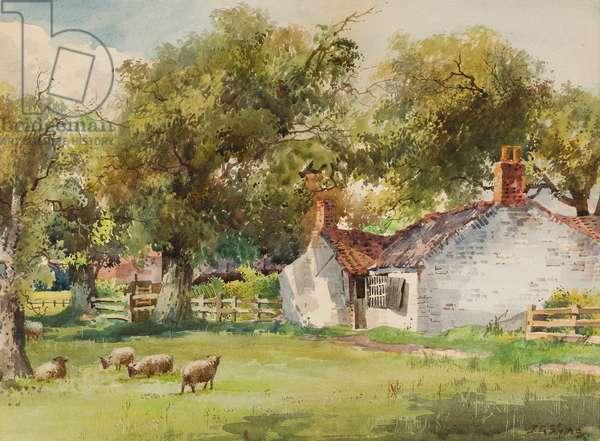 Springtime, Laceby Common (w/c on paper)