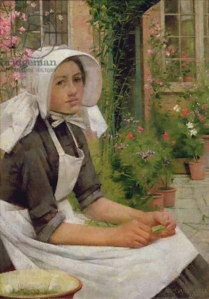 Girl Shelling Peas