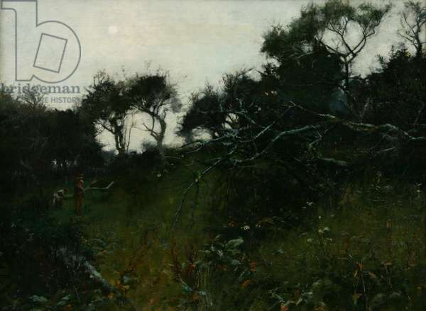 The Orchard, a study into the sun, c.1895 (oil on canvas)