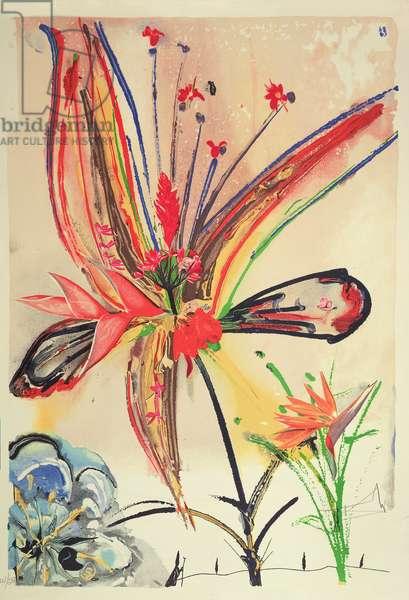 Hawaii Suite, 1973 (colour litho)