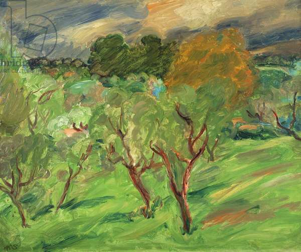 Landscape near Cagnes, c.1935 (oil on canvas)