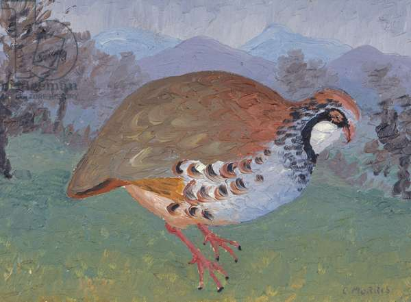 French Partridge, 1934 (oil on panel)