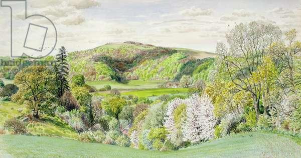 From the Edge of Bignor Park, Spring, c.1964 (w/c)