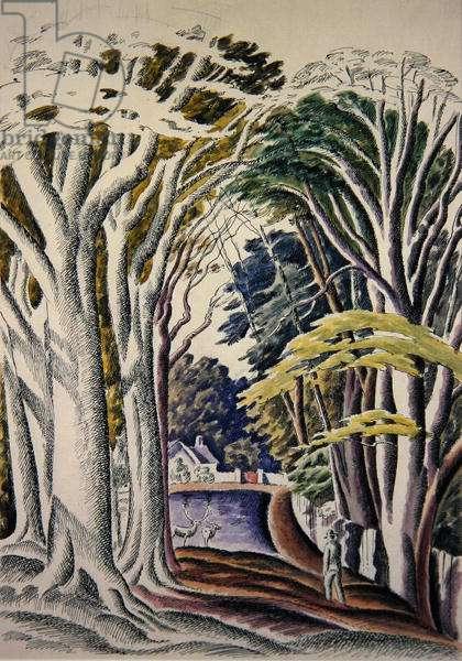 Wooded Landscape (Deer Pond) (ink & wash on paper)
