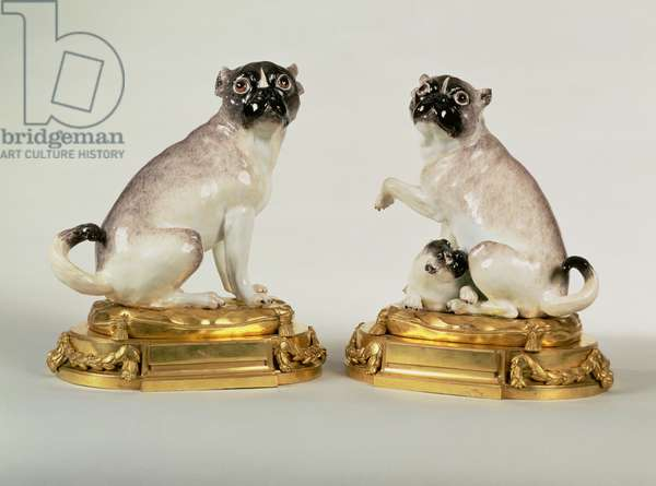 Pair of Meissen porcelain figures of pug dogs mounted in Louis XVI ormolu, c.1750 (porcelain)