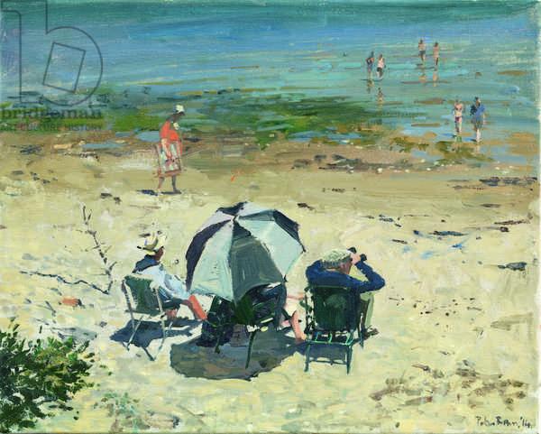 Afternoon on the Beach, Studland, 2014 (oil on canvas)