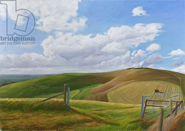 Melbury Hill, Dorset, 2010 (acrylic on canvas)