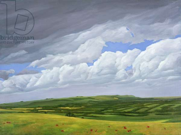 On the Wessex Ridgeway looking towards Westbury, 2008 (oil on canvas)
