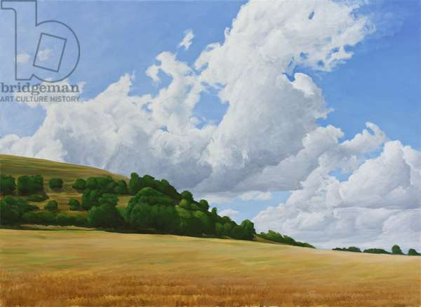 Hambledon Hill Fort, Fields, Clouds, 2010 (acrylic on canvas)