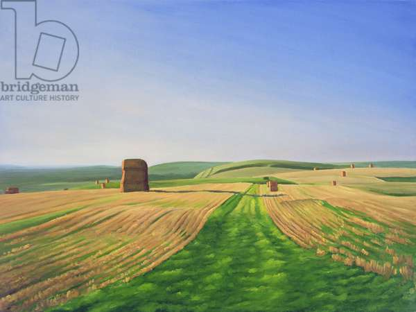 The Wessex Ridgeway Path as it crosses Cotley Hill. Evening Light 1, 2008 (oil on canvas)