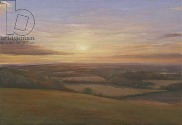 Wiltshire Sunset, 2009 (oil on canvas)