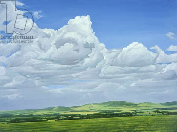 Looking towards the Marlborough Downs from The Wessex Ridgeway, 2008 (oil on canvas)