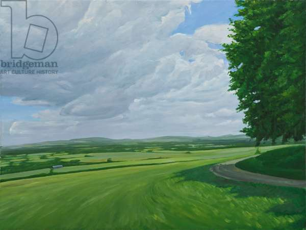 Wiltshire Landscape Above Urchfront, 2010 (oil on canvas)