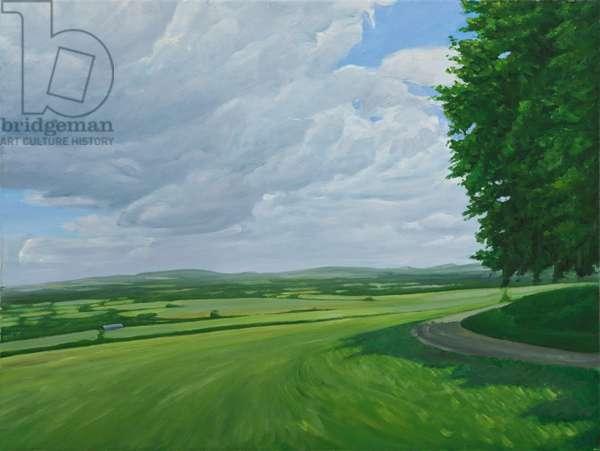 Wiltshire Landscape Above Urchfront, 2010 (oil on canvas)