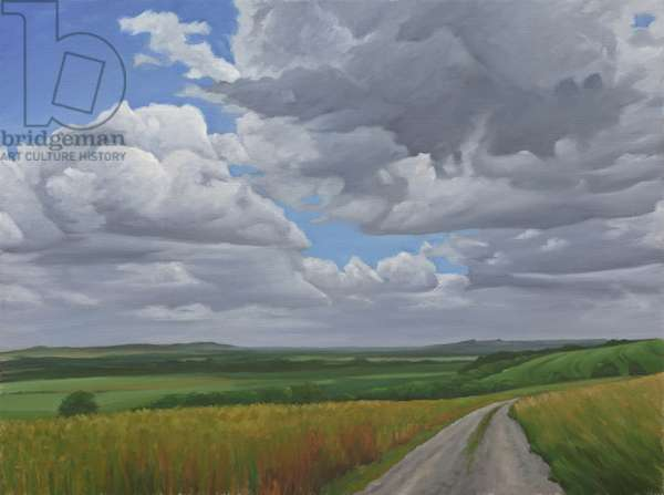 The Wessex Ridgeway Path above Urchfont 2, 2009 (oil on canvas)