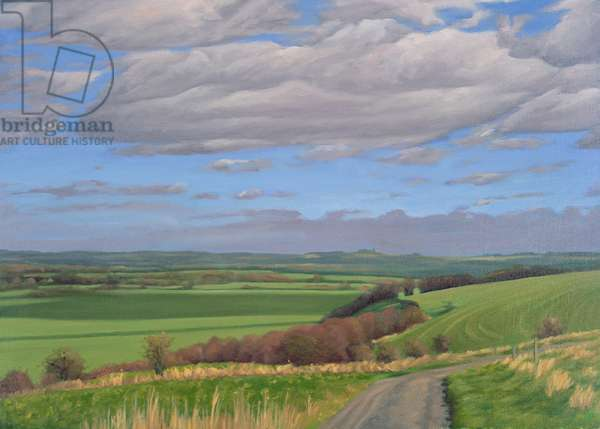 The Western Ridgeway Path above Urchfont. Winter Afternoon, 2007 (oil on canvas)