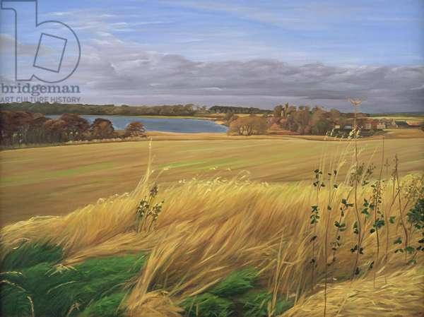 Kilconquhar Loch, 2007 (oil on canvas)