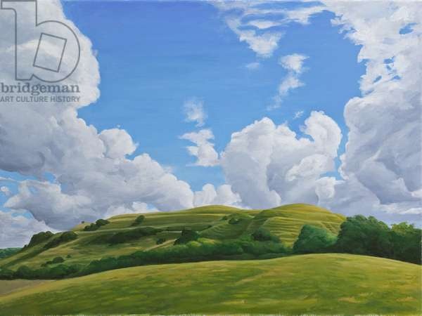 Hambledon Hill Fort, Dorset, 2010 (acrylic on canvas)