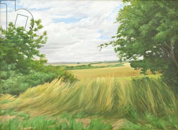 Field Boundary above Upton Lovell, 2011 (oil on canvas)