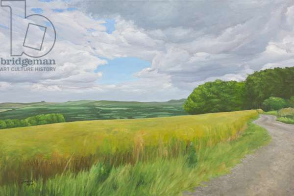 Wessex Ridgeway and Pewsey Downs Beyond, 2011 (oil on canvas)