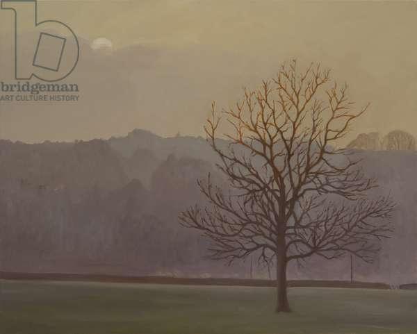 Winter Tree, 2015 (oil on canvas)
