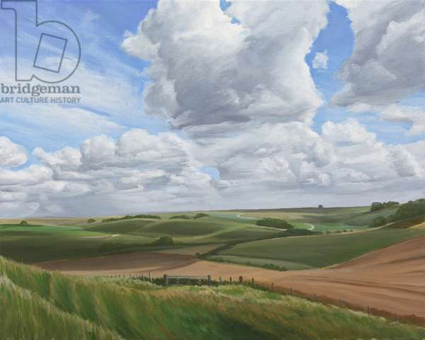 Looking towards Salisbury Plain from the ramparts of Scratchbury Hill Fort 2, 2010 (acrylic on canvas)