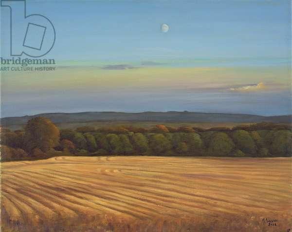 Fields near Neston, Wiltshire, 2005 (oil on canvas)