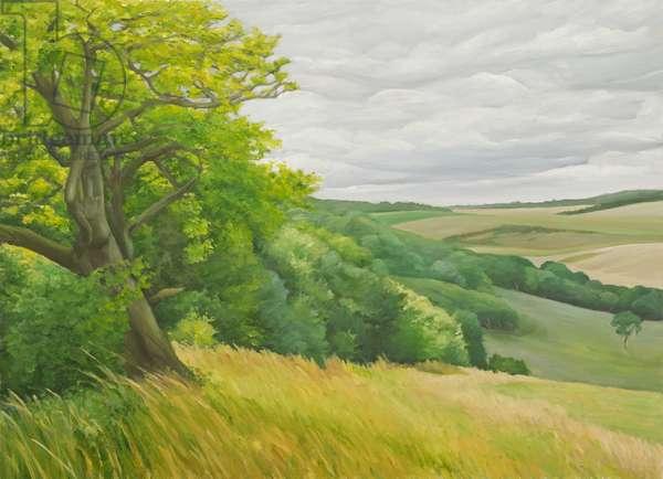 Field Corner aboce Upton Lovell, 2011 (oil on canvas)