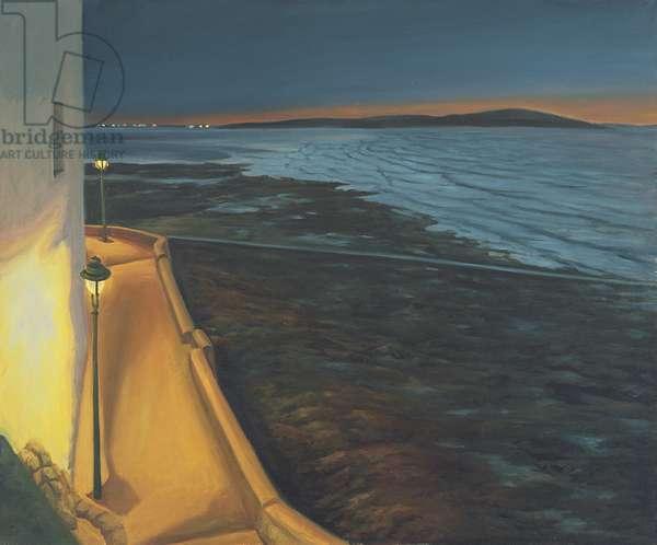 Nightfall Looking Towards Breen Down, 2007 (oil on canvas)