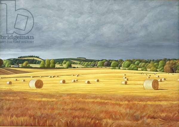 Harvested Fields at Kilconquhar, 2001 (oil on canvas)