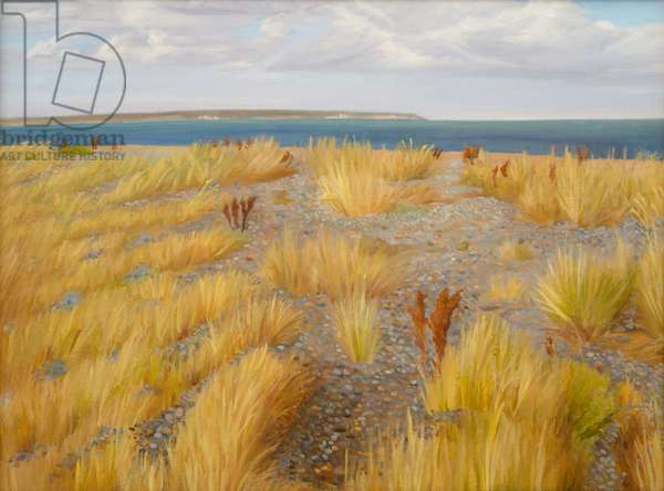 Stony Beach, Sandwich Bay, 2013 (oil on canvas)
