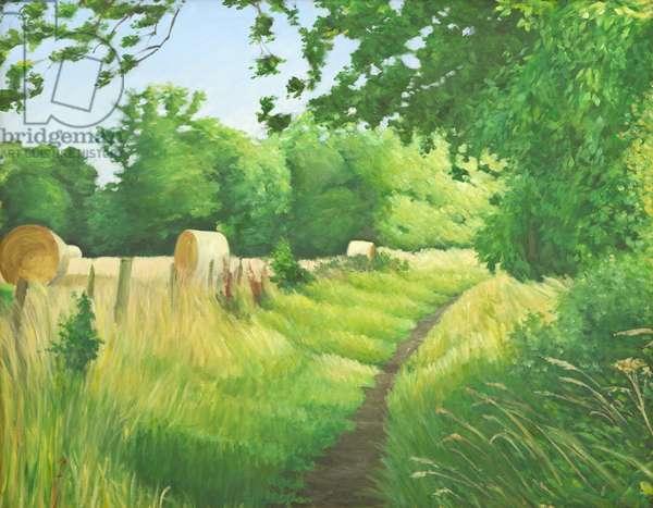 Footpath near Iford, 2011 (oil on canvas)