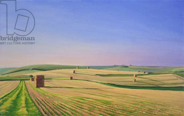 The Wessex Ridgeway Path as it crosses Cotley Hill. Evening Light II, 2008 (oil on canavs)