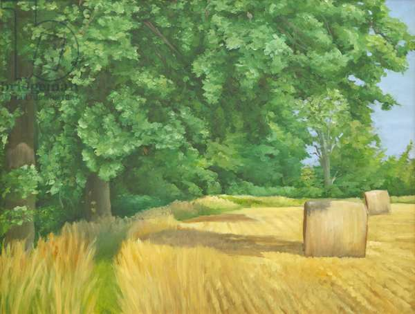 Field Edge near Iford, 2010 (oil on canvas)