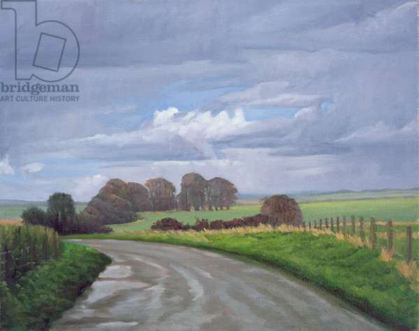 The Imba Range Path above Westbury, 2008 (oil on canvas)