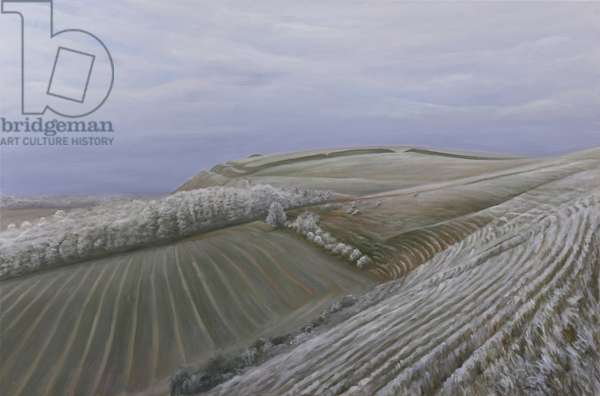 Scratchbury Hill Fort, winter, 2009 (oil on canvas)