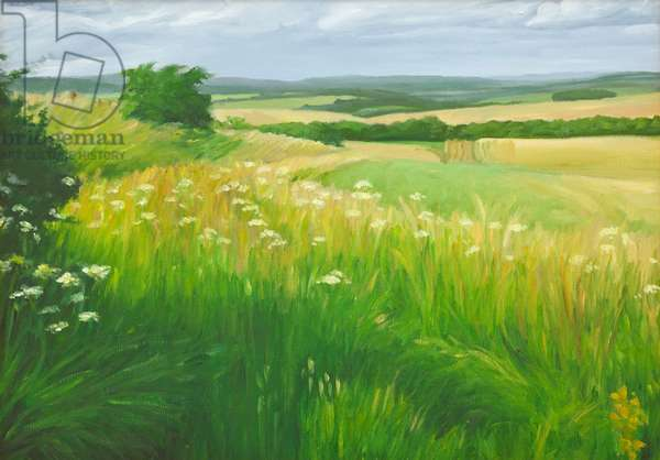 Landscape in the Deverells, Wiltshire, 2010 (oil on canvas)