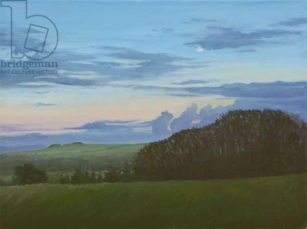 Winter Nightfall along the Wessex Ridgeway, 2011 (oil on canvas)