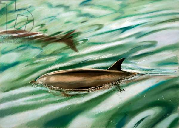 Dolphins (pastel on paper)