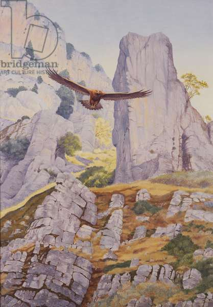 Eagle in flight (oil on canvas)