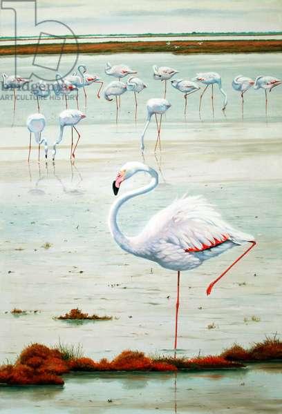 Flamingos, Autumn, Camargue (oil on canvas)