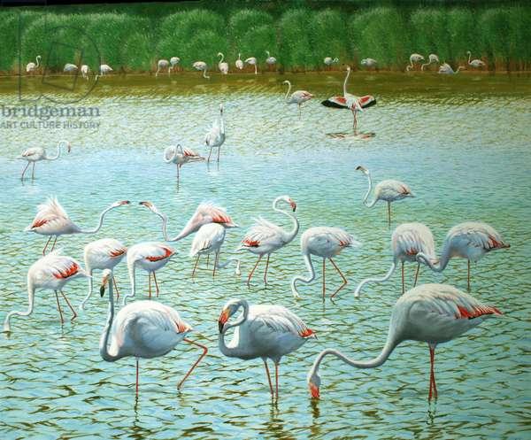 Flamingos, Camargue (oil on canvas)