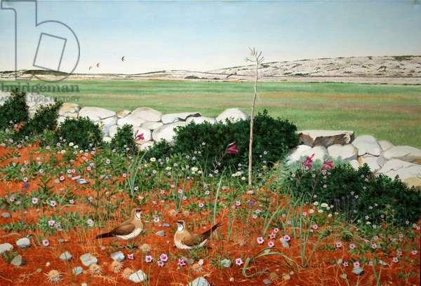 Pratincoles, Levitha, Greece (oil on canvas)