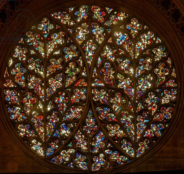 """The """"Bishop's Eye"""" with many reset fragments (rose window - internal)"""
