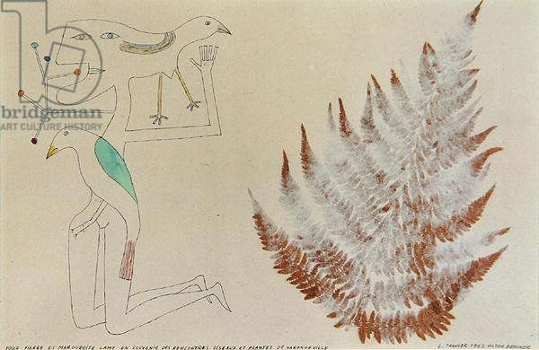 Birds and Plants of Varengeville, 1962 (pen, ink, w/c & collage)