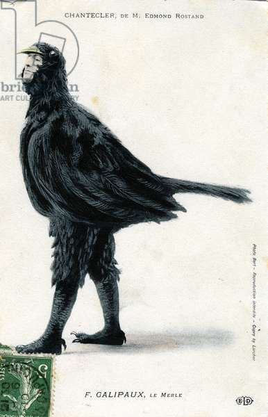 "Character of the play """" Chantecler"""" by Edmond Rostand F. Galipaux in the role of the blackbird postcard 1910 - photo Bert"