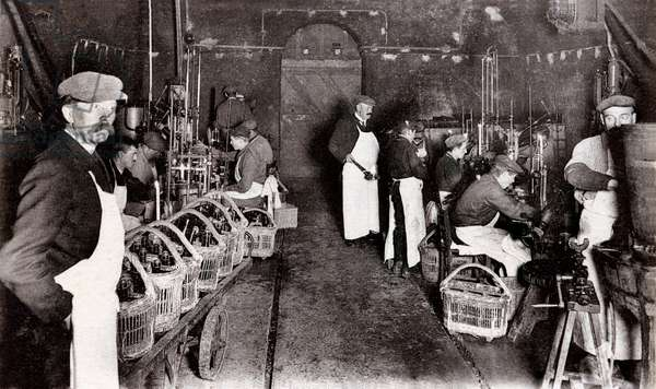 Disgorgement, dosage and capping of champagne bottles in a cellar, beginning of the twentieth century, Maison des Champagnes Veuve Clicquot (Clicquot-Ponsardin), Reims, France (b/w photo)
